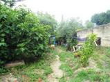 Terreno agricolo in vendita a Castroreale Frazione Protonotaro in Vendita